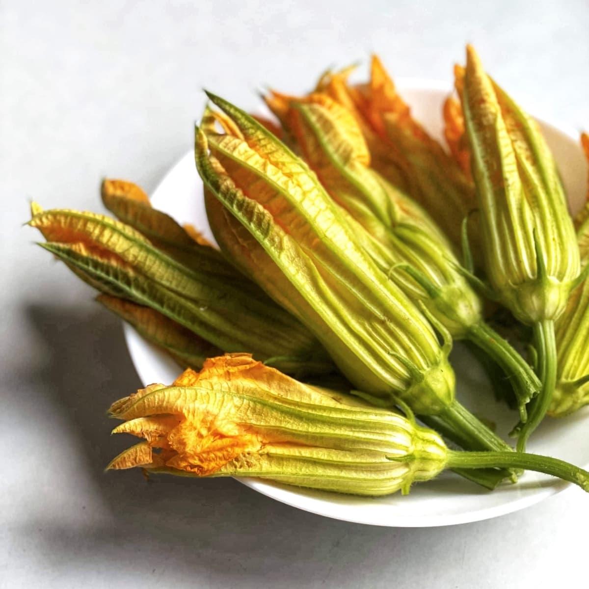 smażone kwiaty cukinii 2